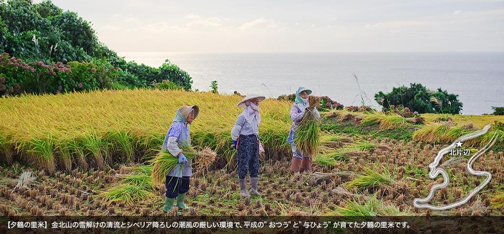 夕鶴の里米(北片辺)