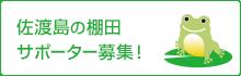 佐渡島の棚田 サポーター募集!
